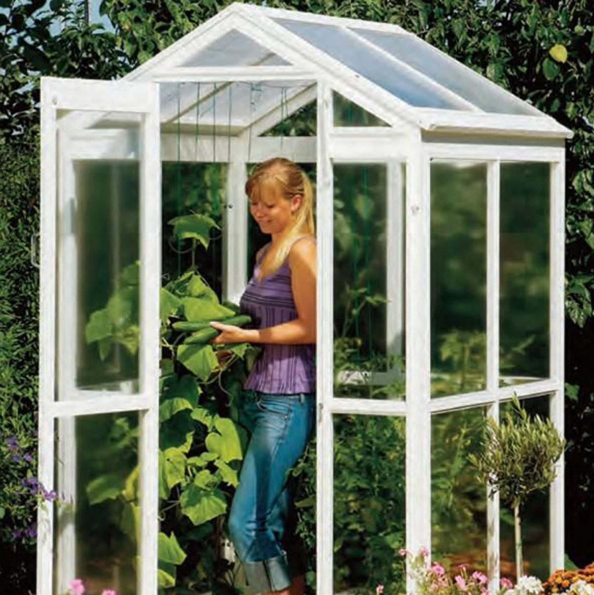Collapsible Greenhouse