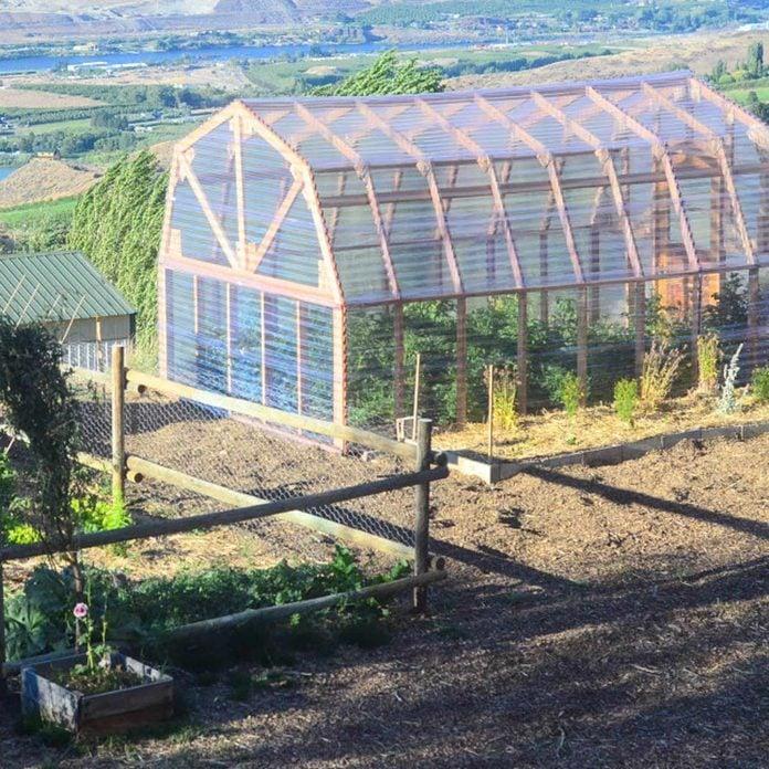 greenhouse-plastic-paneled-barn