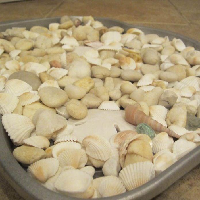 shell boot tray