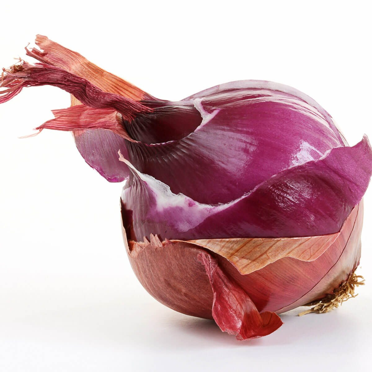 red onion skins