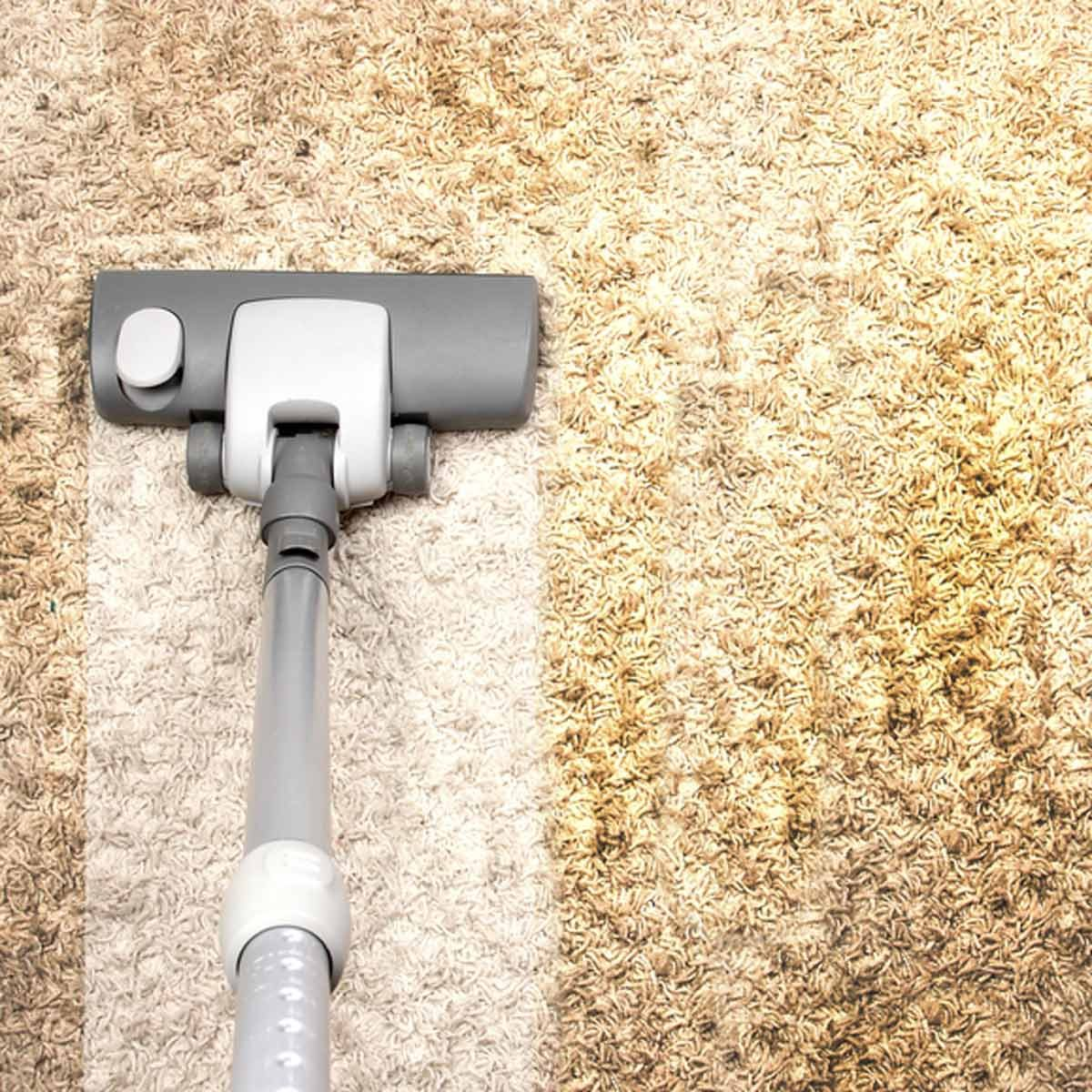 vacuum dirty carpet stains