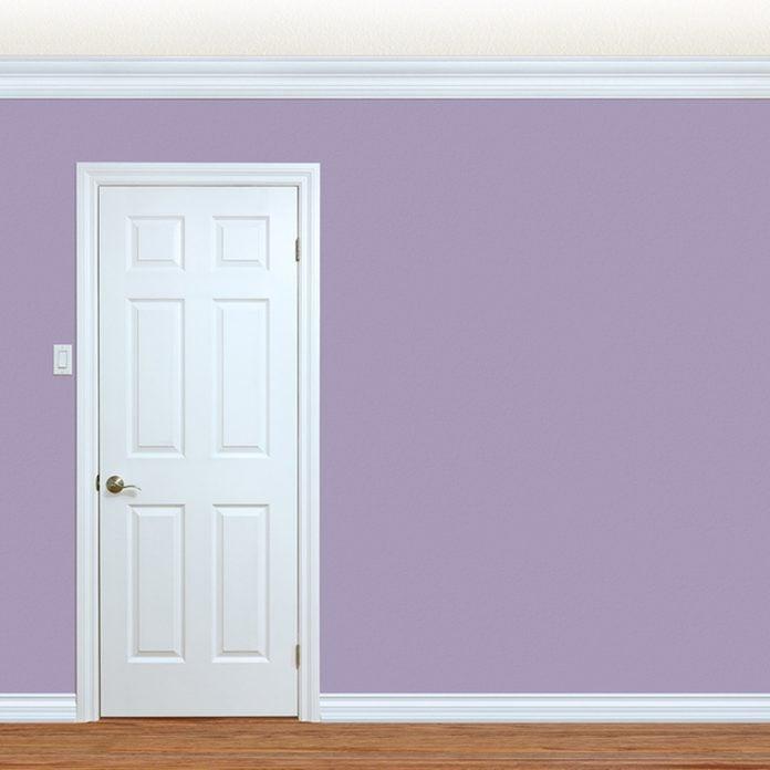 shutterstock_436194085 thin white trim door