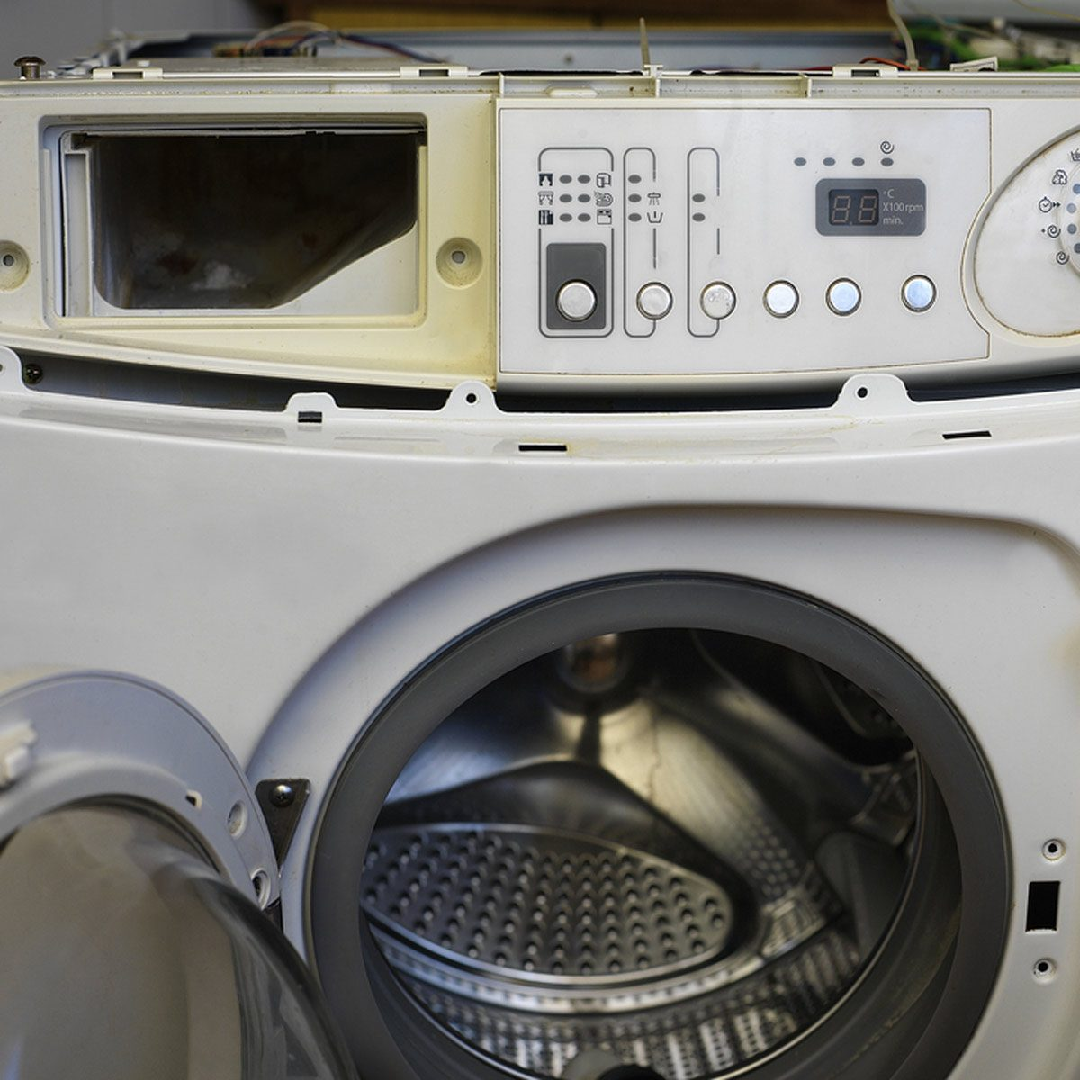 Can Bed Bugs Survive Washing Machine