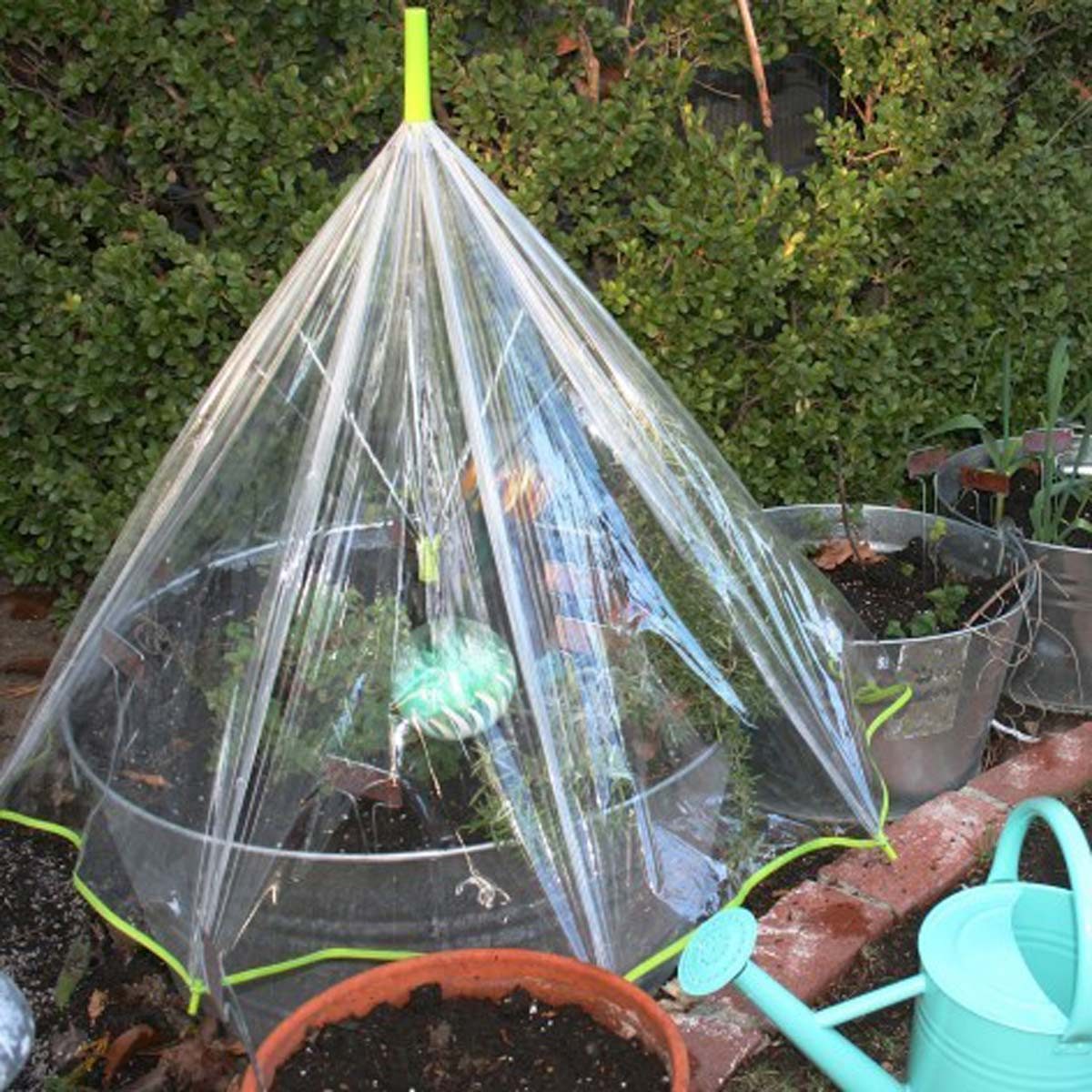 umbrella greenhouse deck greenhouse