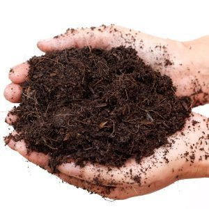 How to Amend Soil for a Nutrient-Rich Garden