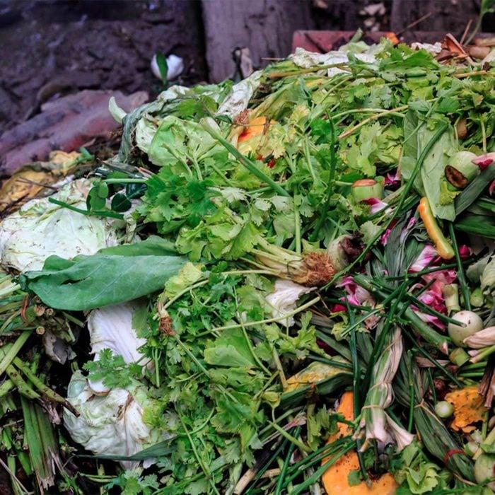 compost pile in vegetable garden