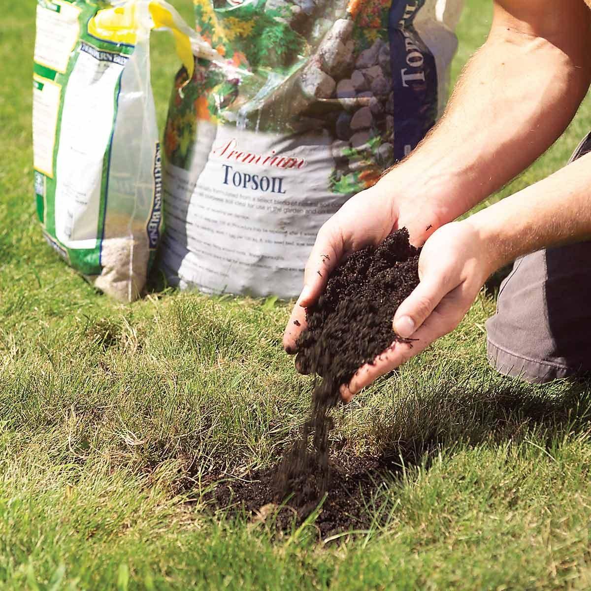 grow green grass