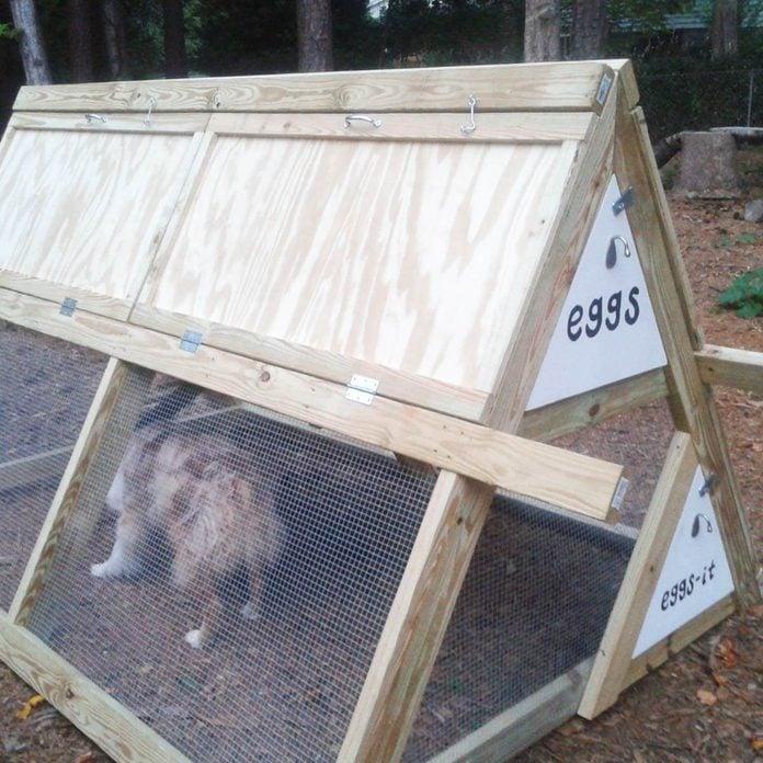 aframe chicken coop