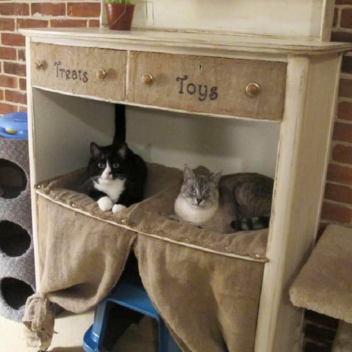 11 Awesome Diy Cat Furniture Ideas The Family Handyman