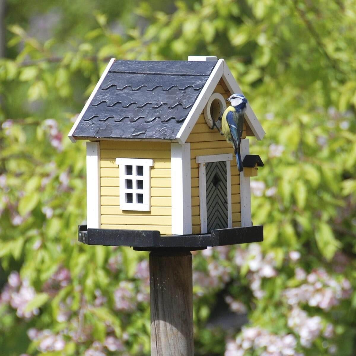 cottage birdhouse
