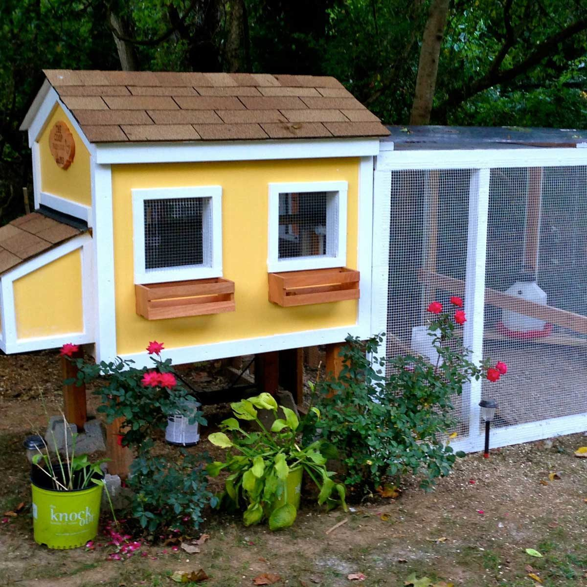 chicken coop house with screened porch