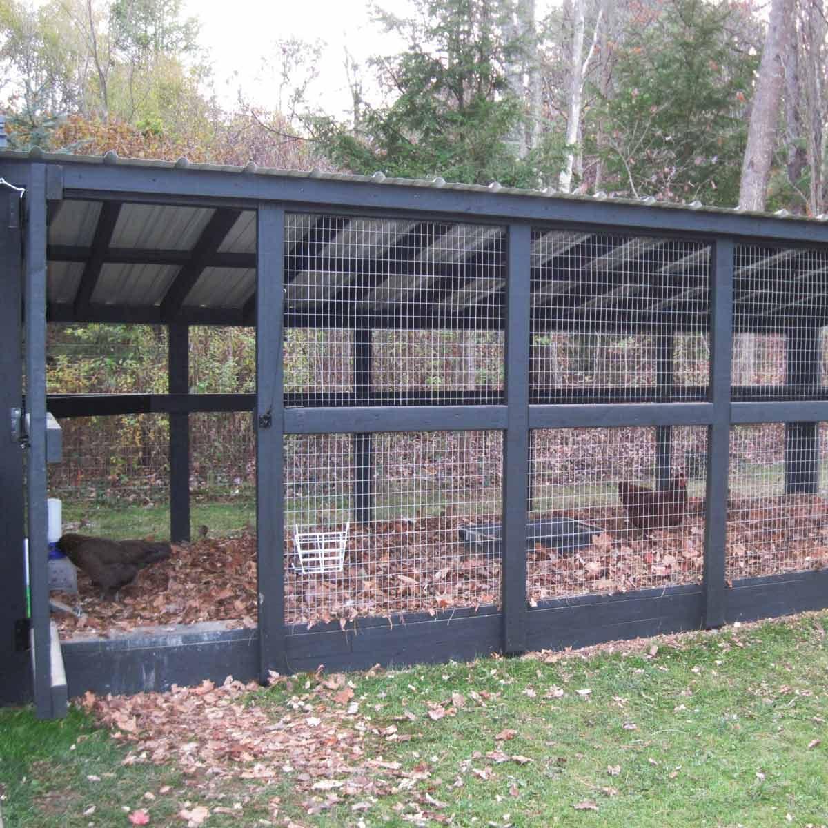 large run chicken coop