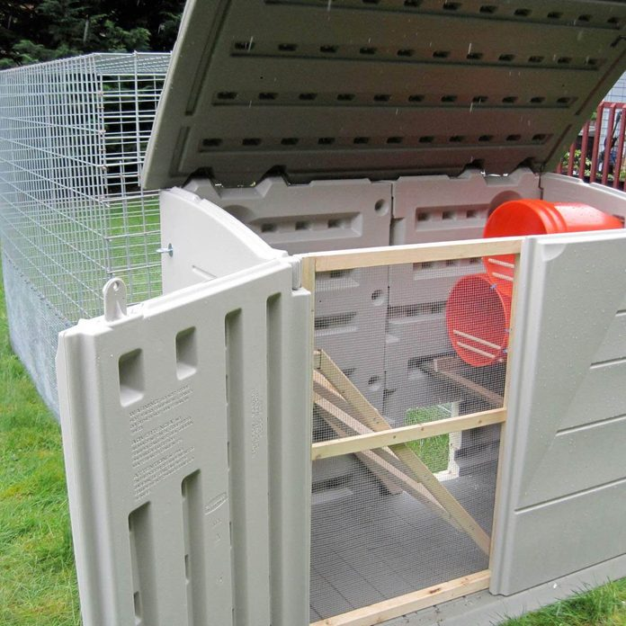 shed chicken coop
