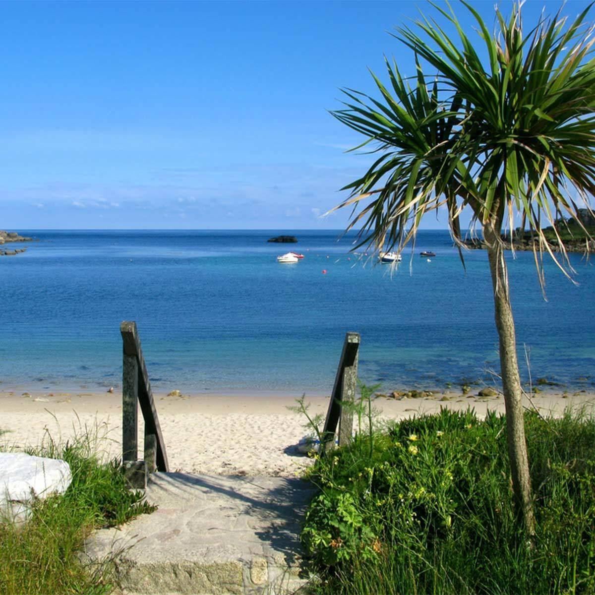 Tamarisk and Llewynywermod Royal Beaches vacation tropical