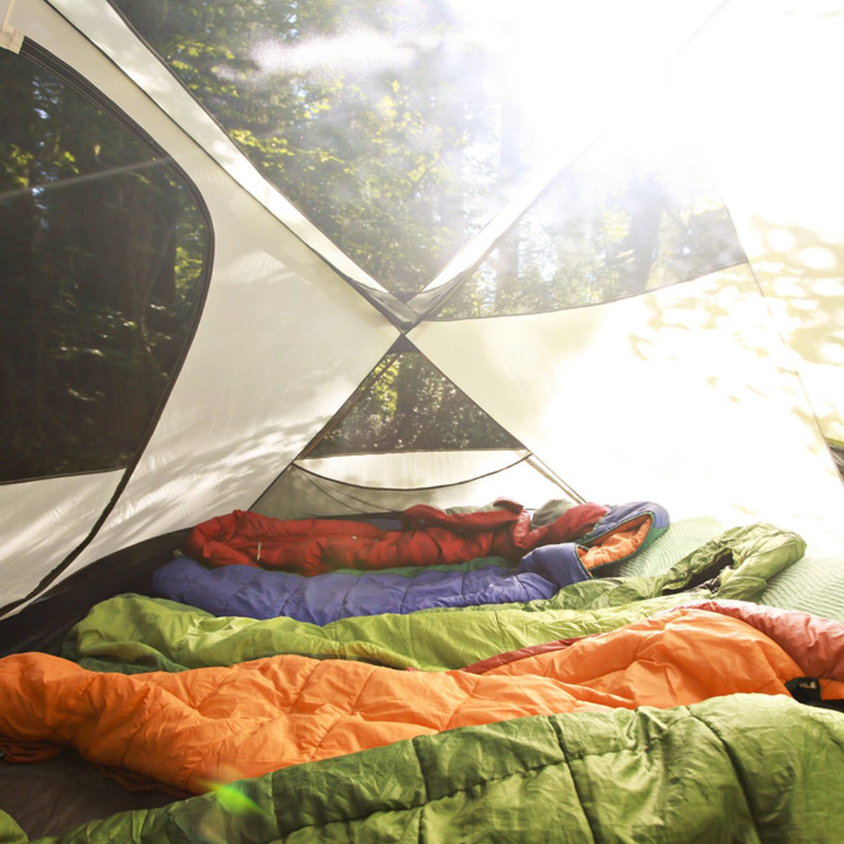 camping tent sleeping bags