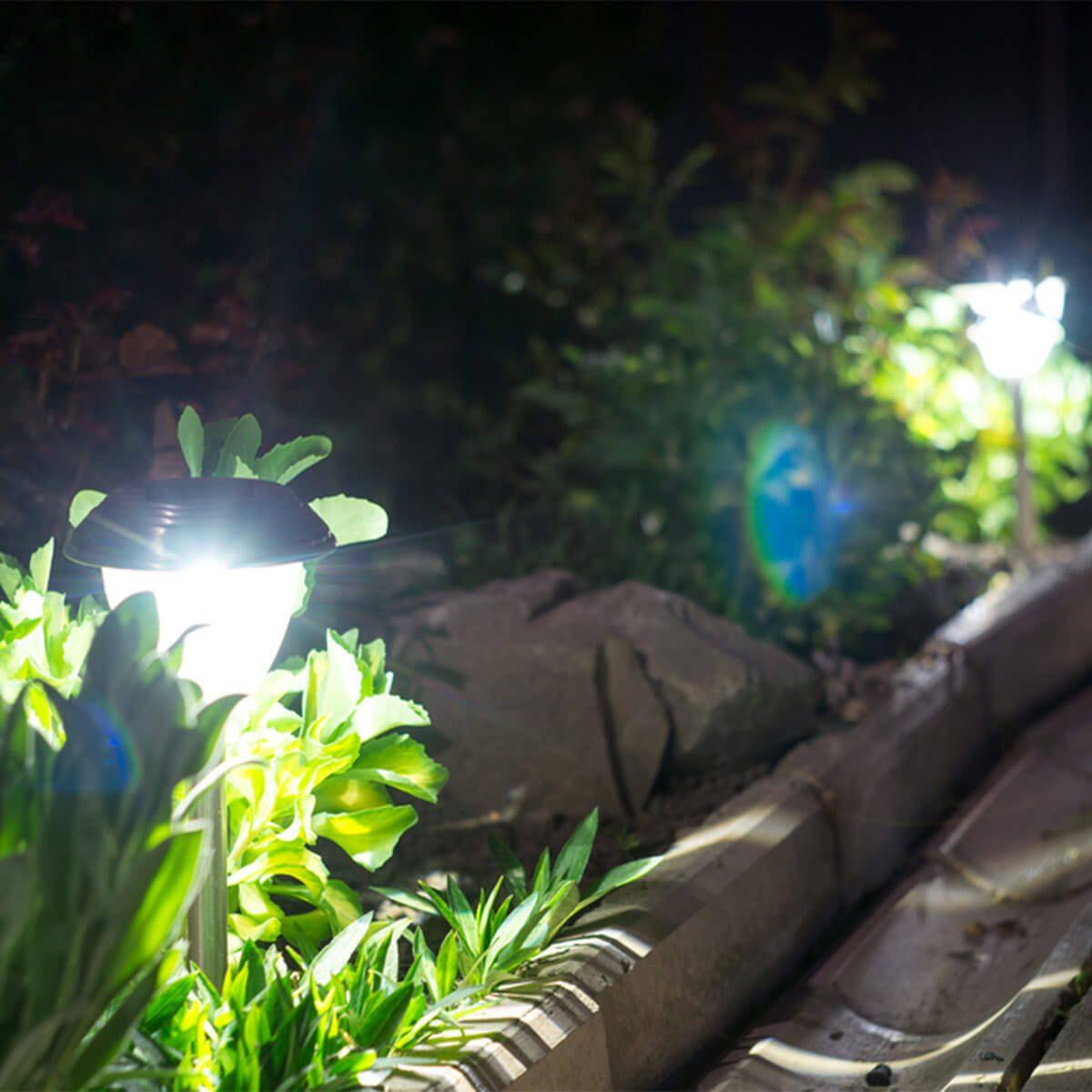 outdoor path lights garden