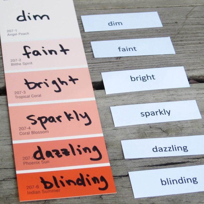 Paint Sample Vocabulary Flashcards
