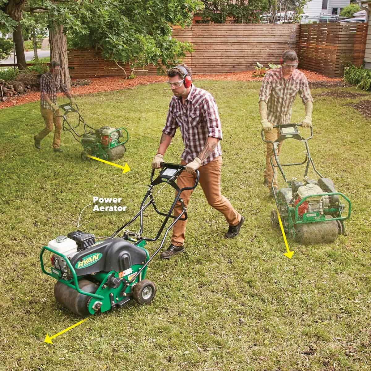 aerate the soil lawn