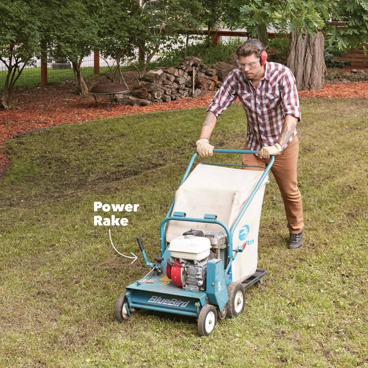 Re A Weedy Patchy Lawn The Family Handyman