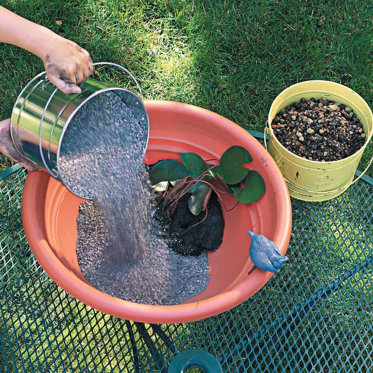 water garden kitty litter