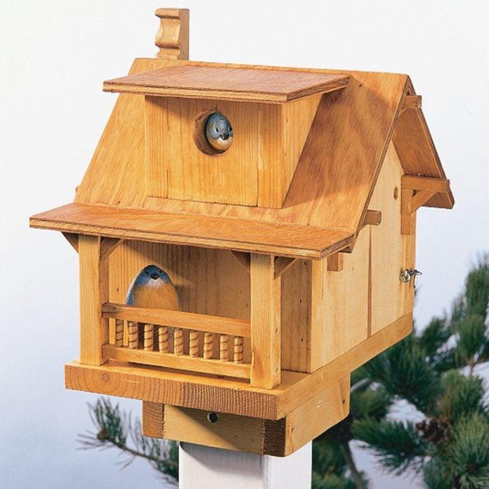 Build A Backyard Birdhouse Diy Family Handyman