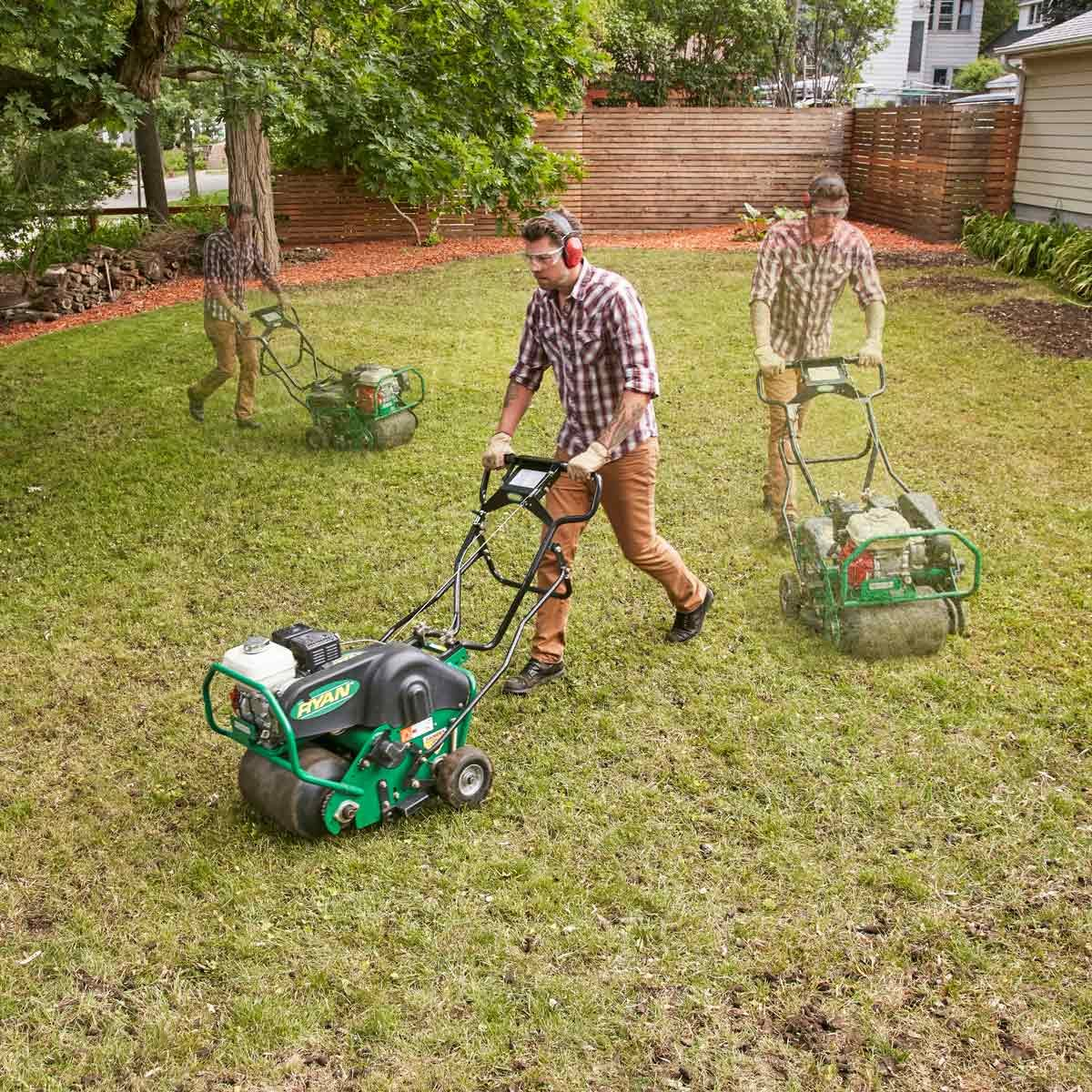 Restore A Weedy Amp Patchy Lawn The Family Handyman