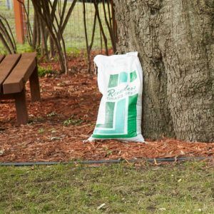 How To Buy Quality Lawn Seed