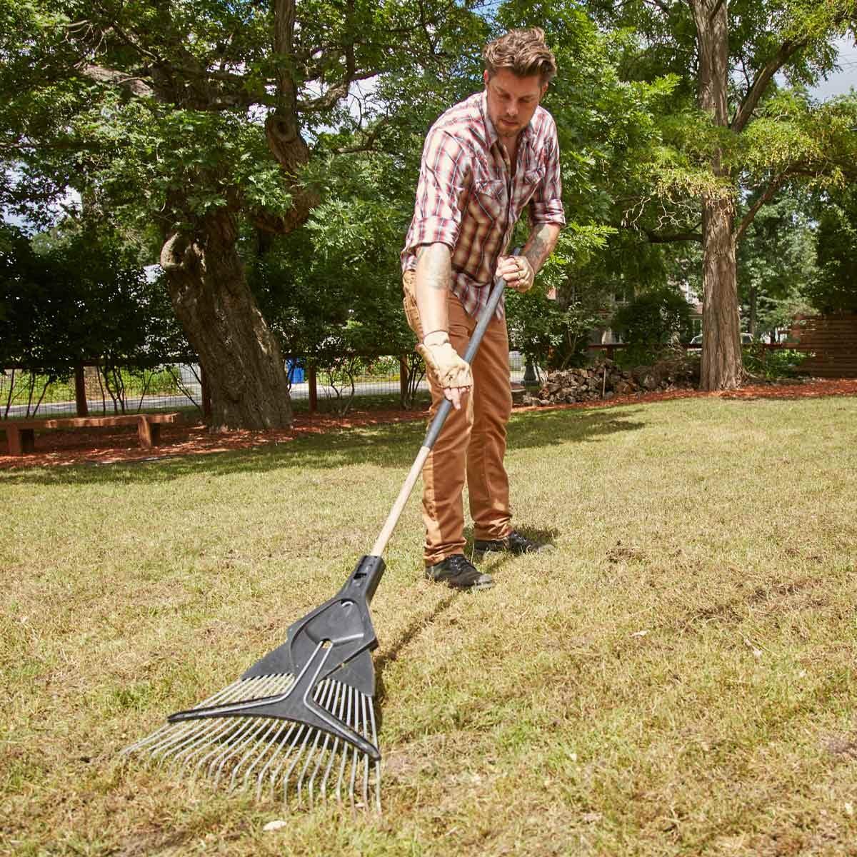 rake the seed