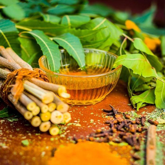 neem oil bug repellent