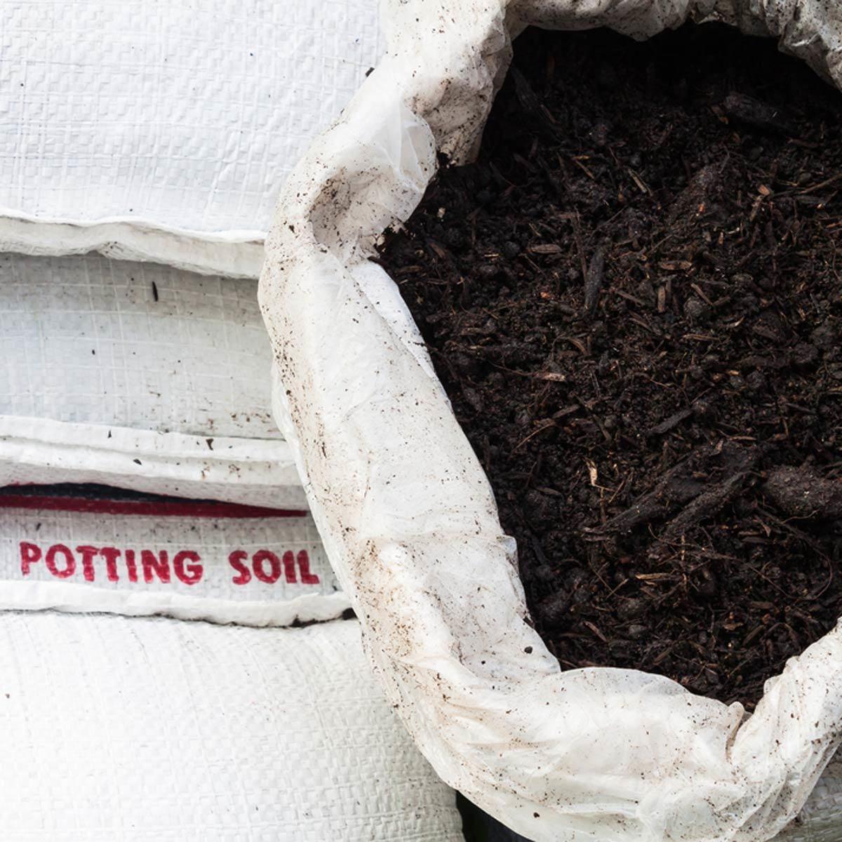 soil in bag