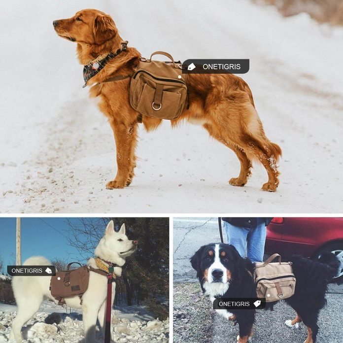 dog pack saddlebag