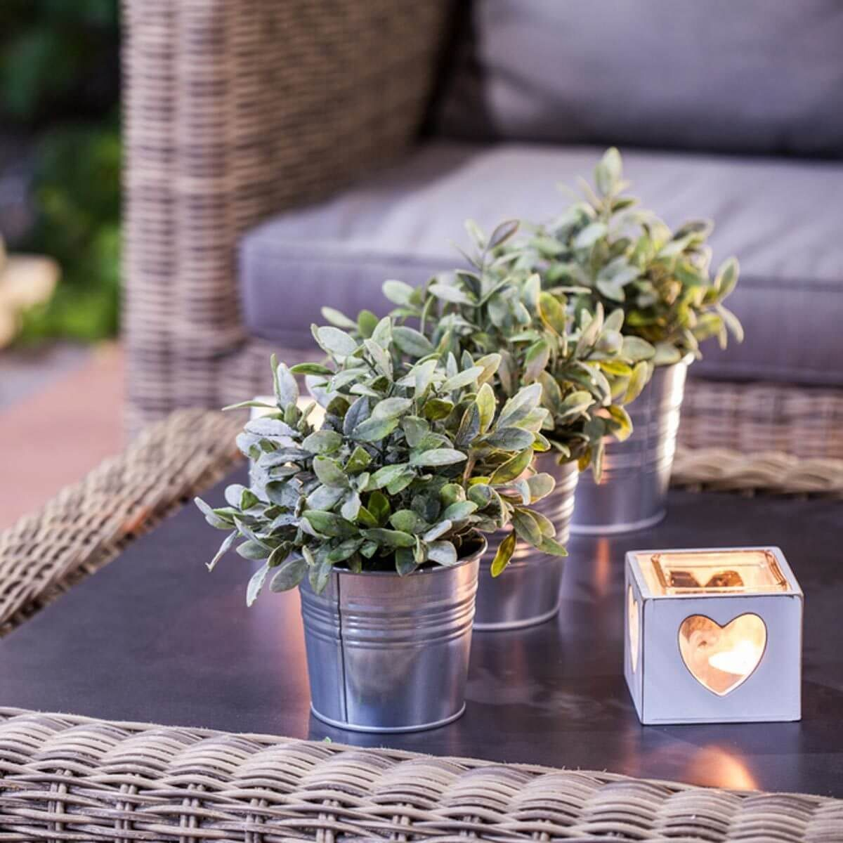 patio furniture accessories plants