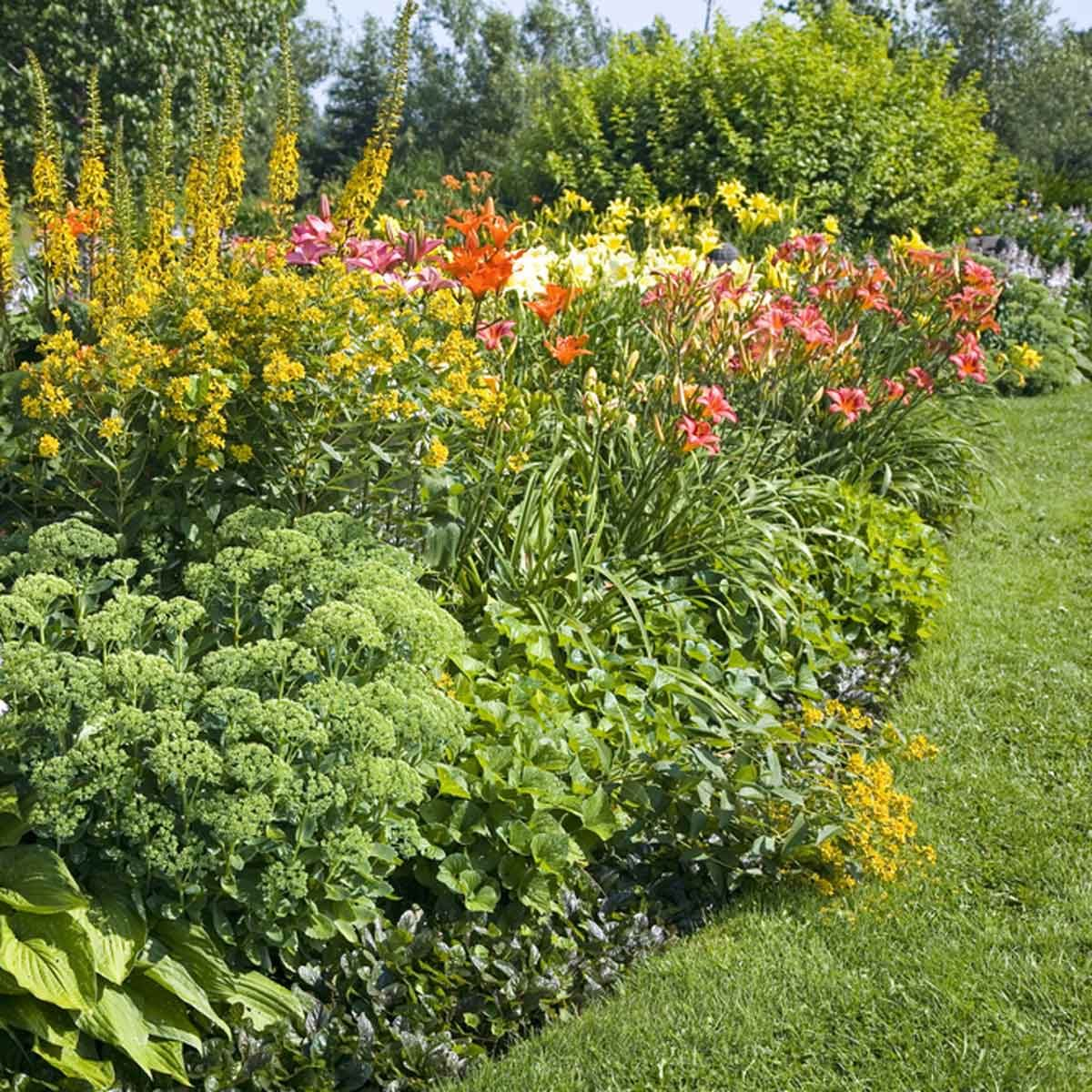 12 Inspiring Flower Bed Designs The Family Handyman