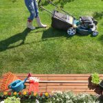 15 Best Lawn Care Products for 2020