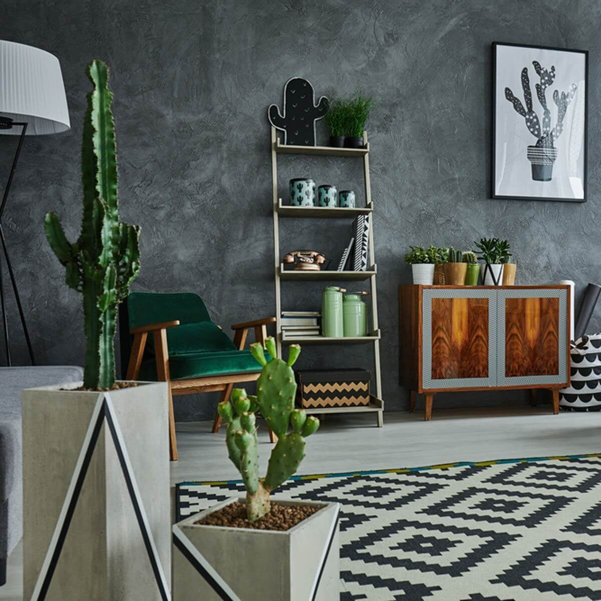 14 Ways To Decorate Your Home With Cactus The Family