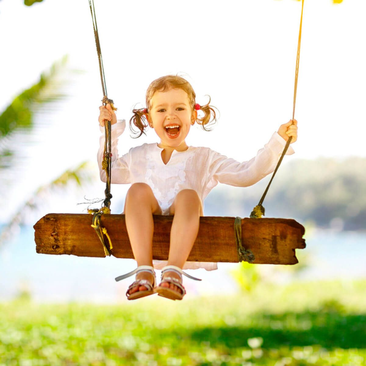 Traditional Wooden Swing