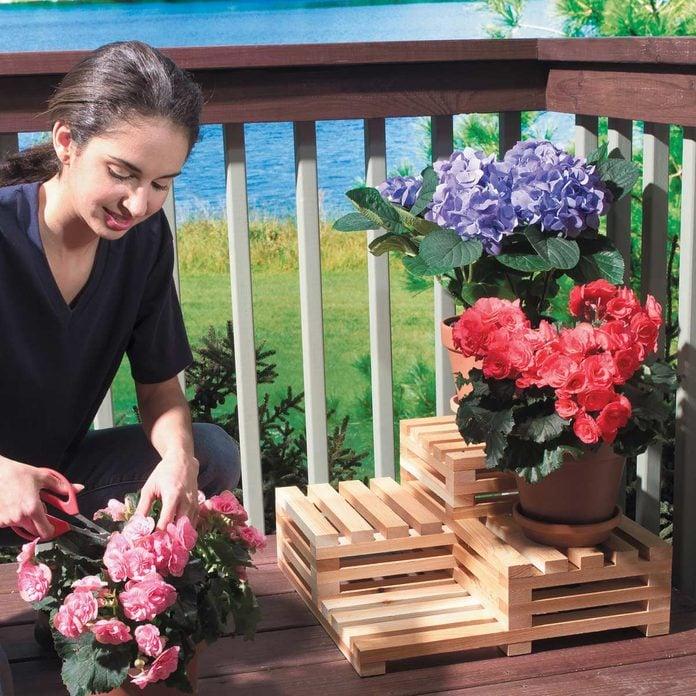 flower stair step plant display
