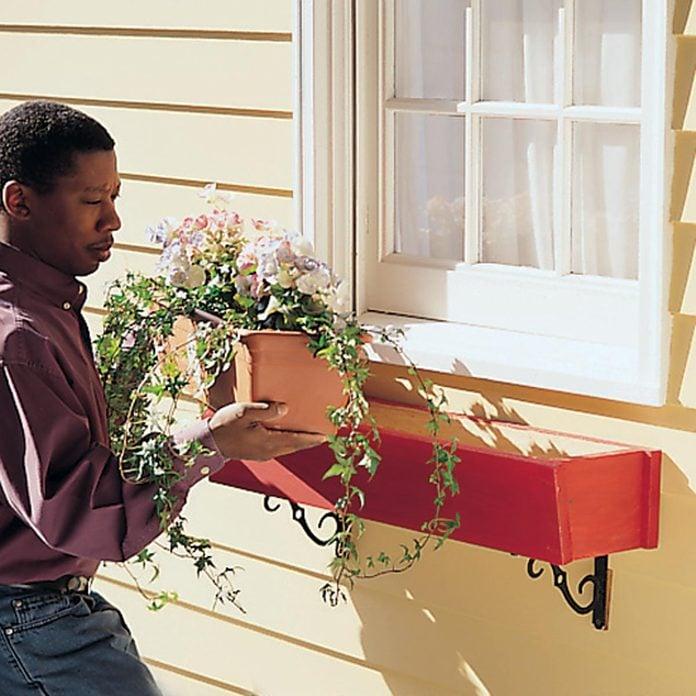 root-proof window box flowers