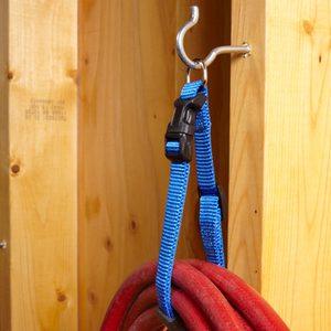 dog collar clip