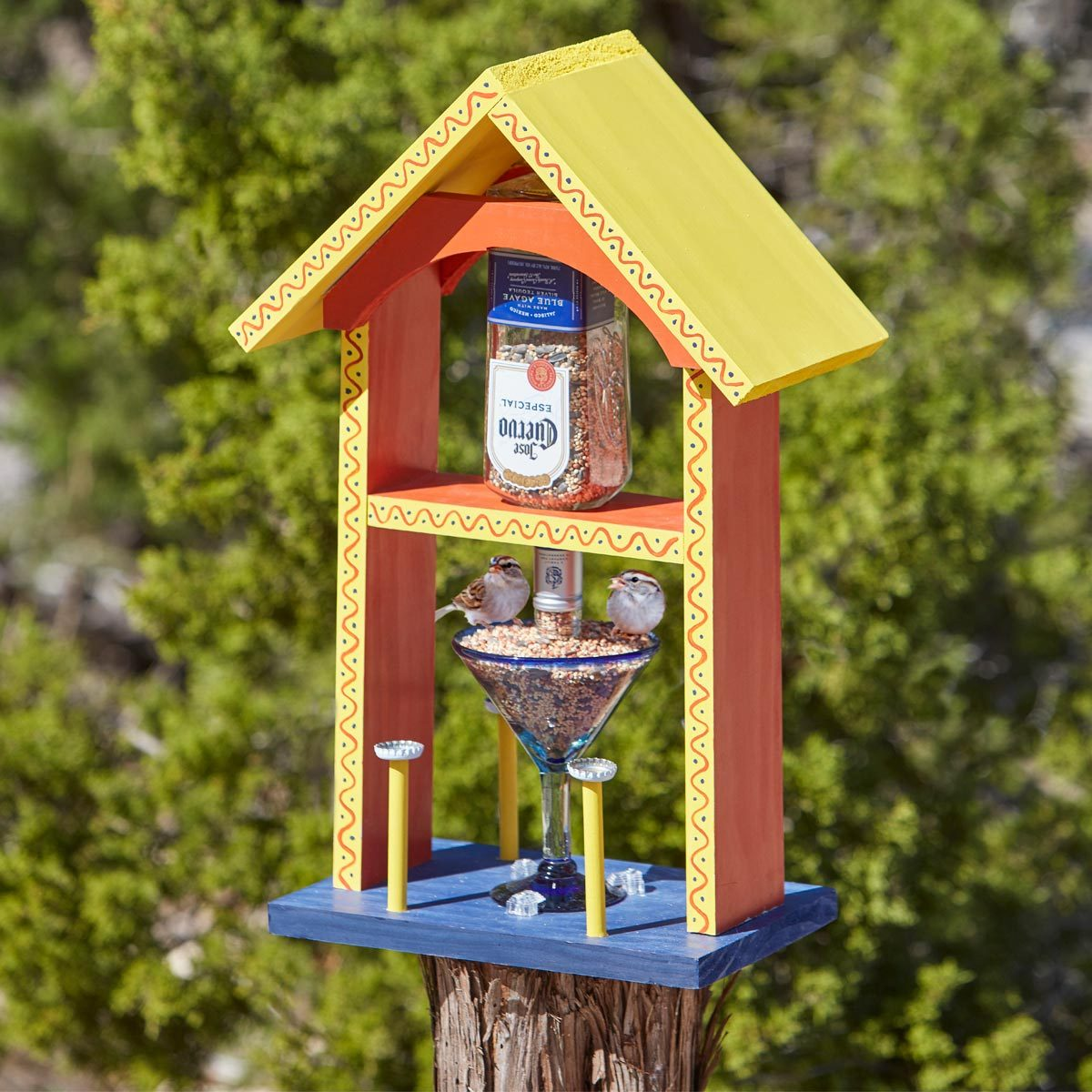 2 Hour Project How To Build A Cantina Bird Feeder The