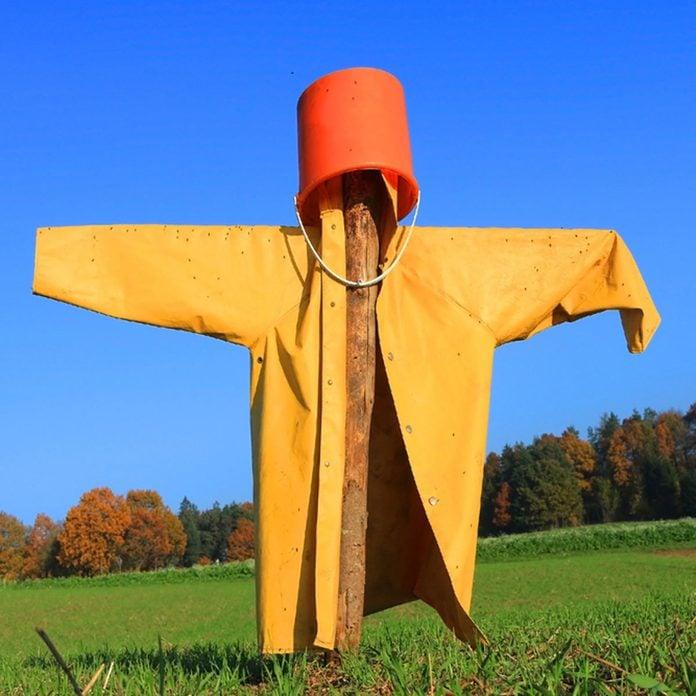 simple scarecrow bucket head