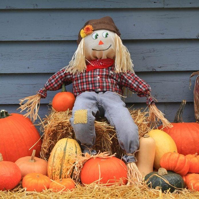 classic scarecrow pumpkins fall