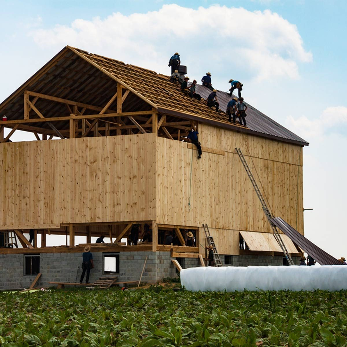 What is Amish Barn Raising? — The Family Handyman Raised Roof Barn Style House Plans on l-shaped cape house plans, barn garage plans, victorian style barn plans, barn style chicken coop plans, small barn plans, pole barn plans, barn type roof designs, gambrel style home plans, barn style garages, gambrel roof plans, barn homes,