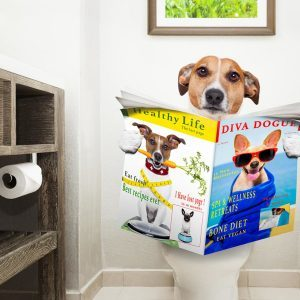 13 Unique Toilet Paper and Bathroom Reading Material Storage Hacks