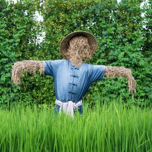 13 Amazing Scarecrows