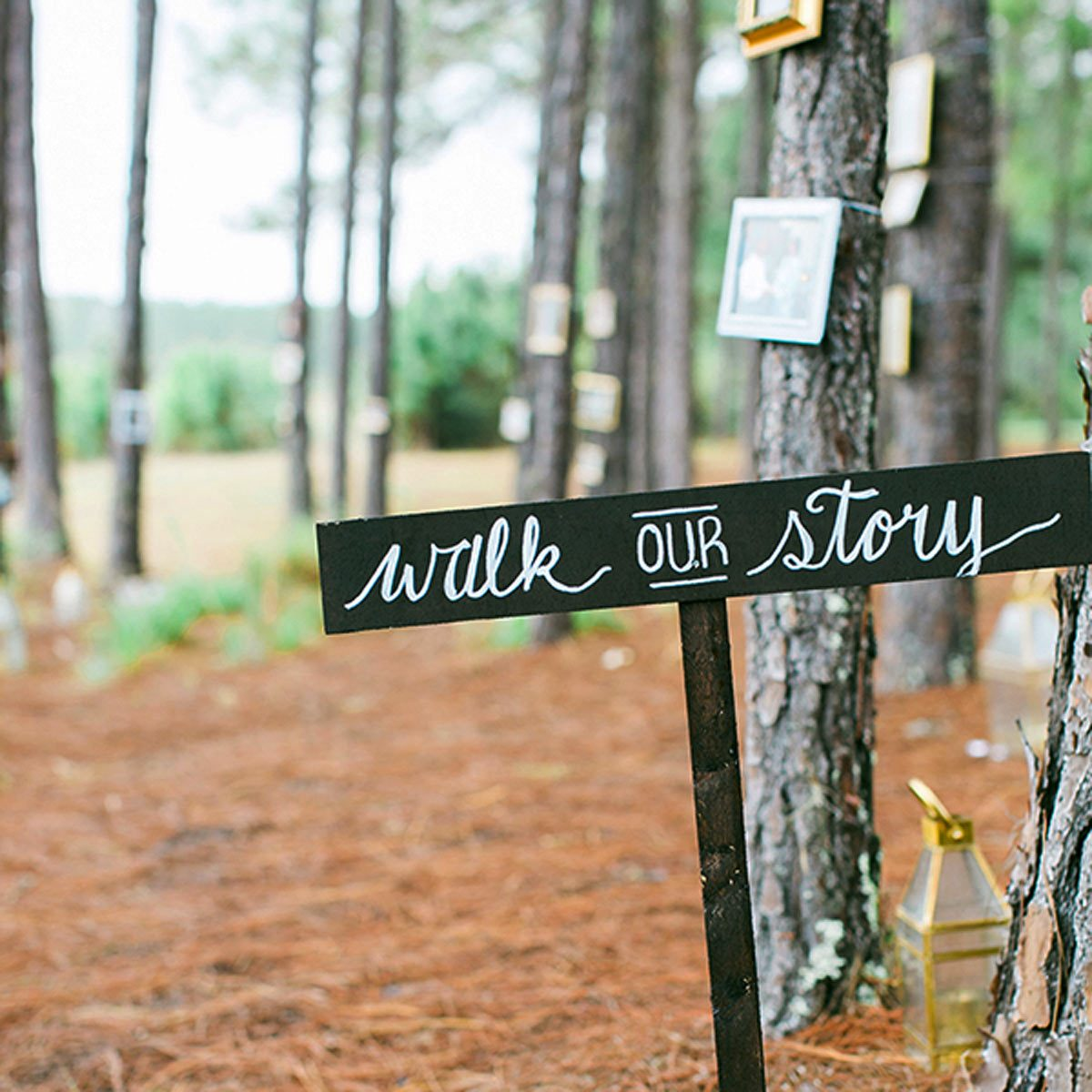 Outdoor Backyard Wedding Diy Decor Walk Our Story Photo Journey