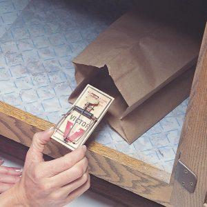 Mousetrap Disposal Bag