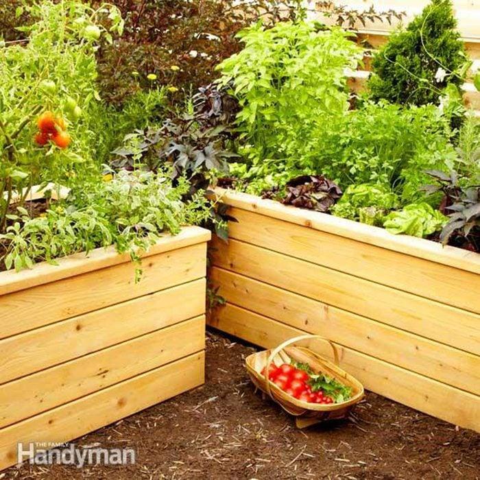 small backyard planters