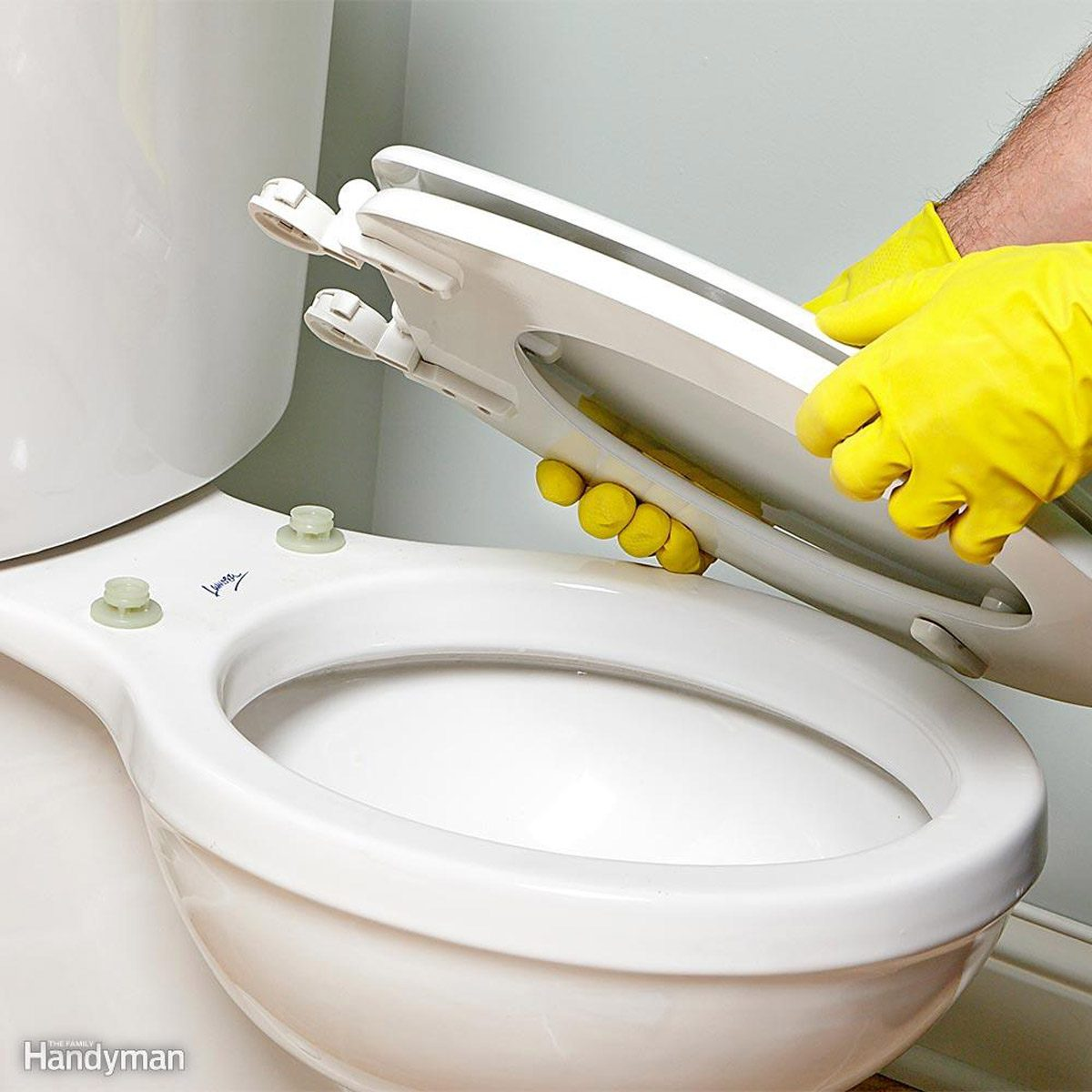 detachable-toilet-seat