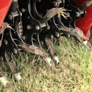 This Is The Best Season to Aerate Your Lawn